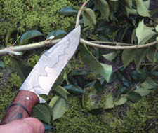 Light chopping was achieved with the Lorien by choking way back on the handle. The thin edge geometry made liming green branches for trap parts effortless.
